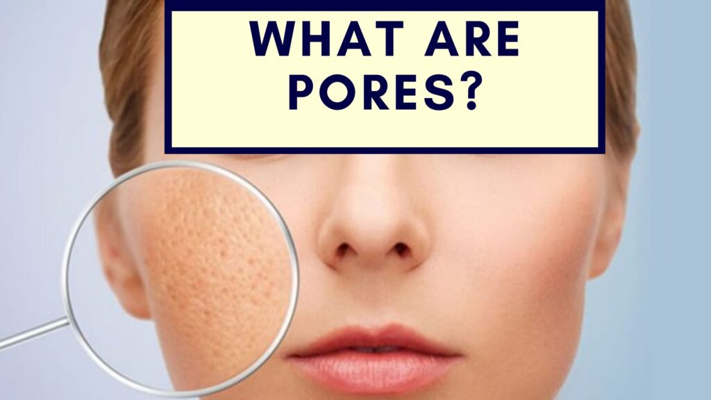 what are pores